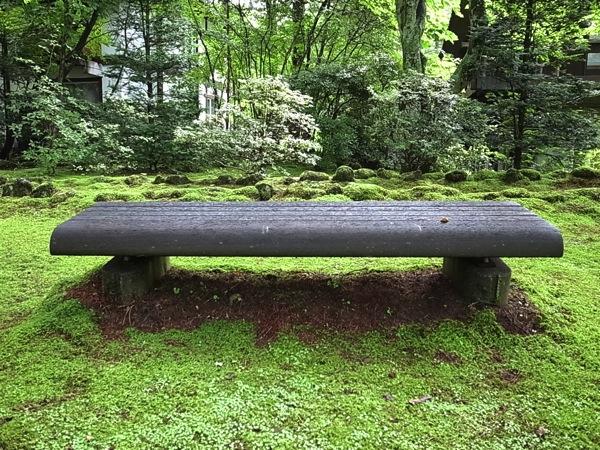 南が丘倶楽部のベンチ
