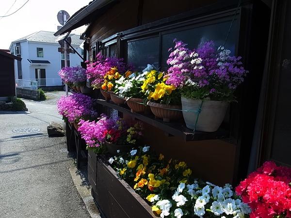 青梅の街道沿いの花屋さん