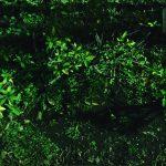 【世界の終りとハードボイルド・ワンダーランド】村上春樹全作品 1979~1989〈4〉