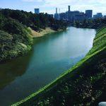 11/10(日)【横浜マラソン2019】今年こそ、走ってみよう